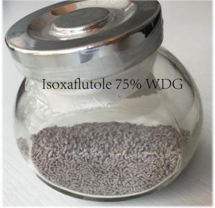 Isoxaflutole Technical & 75%WDG